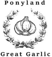 small garlic